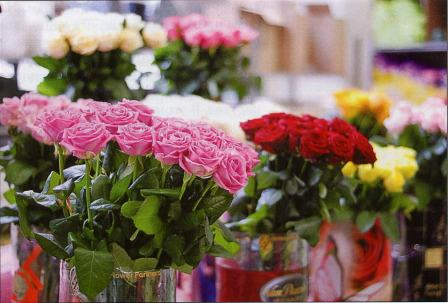 floriculture_Industry